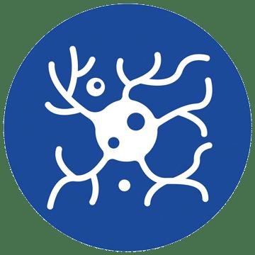 icon-nerves2